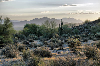 Photograph - $250 - 16x20 Canvas - Desert Sunrise by Tam Ryan