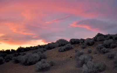 Art Print featuring the photograph Desert Sunset by AJ  Schibig
