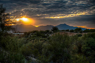 Photograph - Desert Sunset by Dan McManus