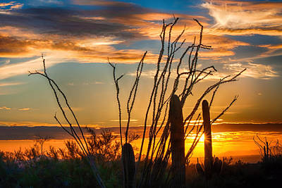 Photograph - Desert Sunset by Fred Larson