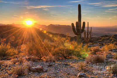 Desert Sunset Photograph - Desert Sunset II by Eddie Yerkish