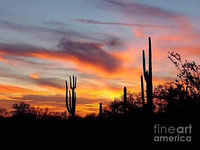 Photograph - Desert Sunset by Joseph Baril