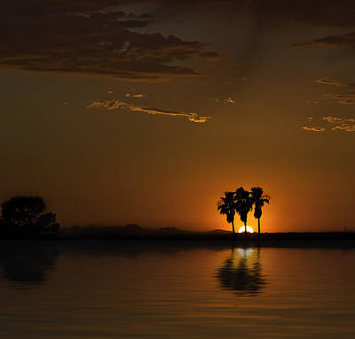 Photograph - Desert Sunset by Lynn Geoffroy