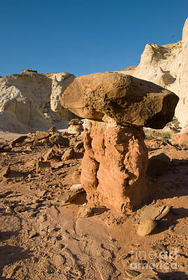 Photograph - Desert Toadstool by Kate Sumners