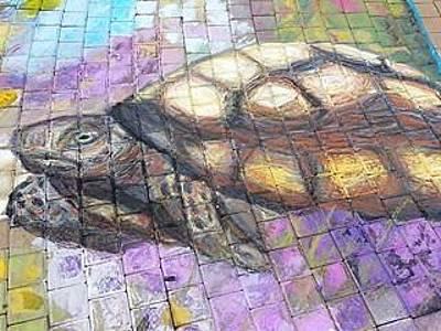 Pastel - Desert Tortoise by Marisa Salazar