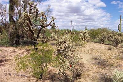 Photograph - Desert View by R B Harper