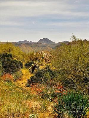 Marilyn Photograph - Desert Vista by Marilyn Smith