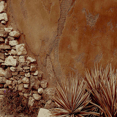 Desert Wall And Garden Art Print by Sherri  Of Palm Springs