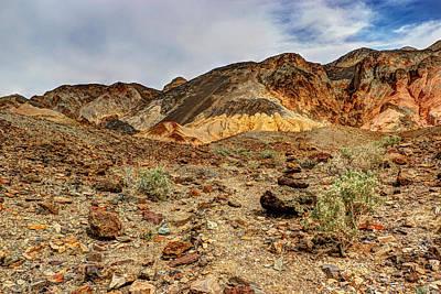 Photograph - Desert Zen by Heidi Smith