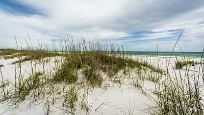 Photograph - Deserted Beach by David Morefield