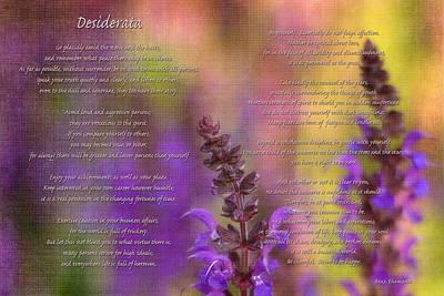 Photograph - Desiderata 2 by Joann Vitali