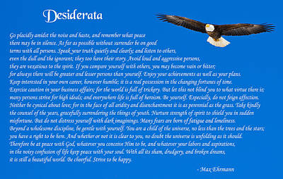 Photograph - Desiderata With Bald Eagle by Greg Norrell