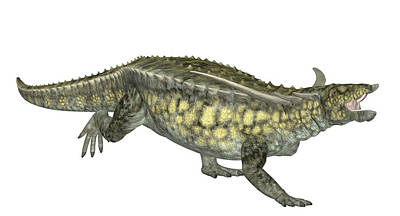 Paleozoology Photograph - Desmatosuchus Dinosaur by Friedrich Saurer