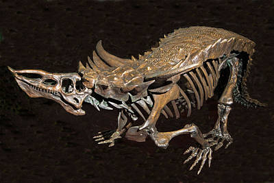 Photograph - Desmatosuchus Dinosaur by Millard H. Sharp