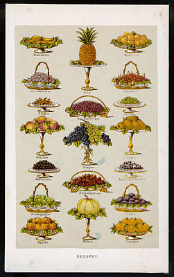 Dessert Fruits, Including  Ginger Art Print by Mary Evans Picture Library