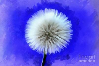 White Flower Photograph - Destiny Wish by Krissy Katsimbras