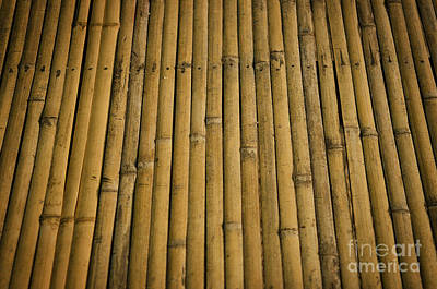 Photograph - Detail Of Bamboo Surface by Jacek Malipan