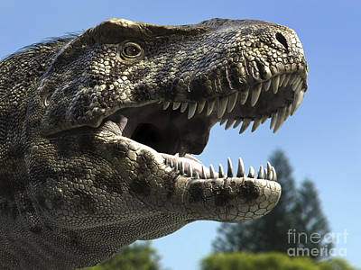 Detailed Headshot Of Tyrannosaurus Rex Art Print by Rodolfo Nogueira