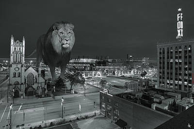 Fox Valley Photograph - Detroit Lions by Nicholas  Grunas