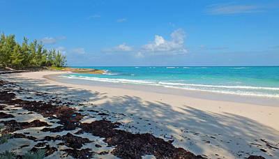 Photograph - Devil's Backbone Reef Beach by Duane McCullough