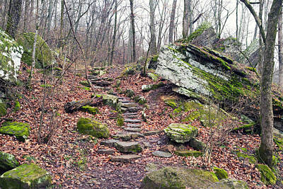 Devils Den Photograph - Devil's Den Stone Stairs In Autumn by Tanya Harrison