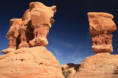 Photograph - Devils Garden Faces by Adam Jewell