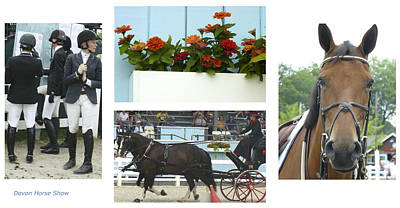 Photograph - Devon Horse Show Group by Mary Ann  Leitch