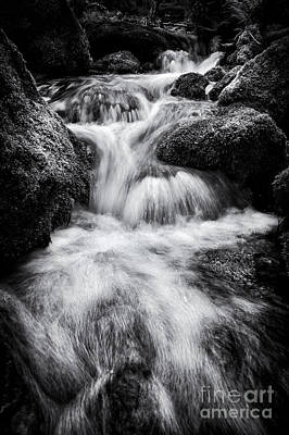 English Countryside Photograph - Devon River Monochrome by Tim Gainey
