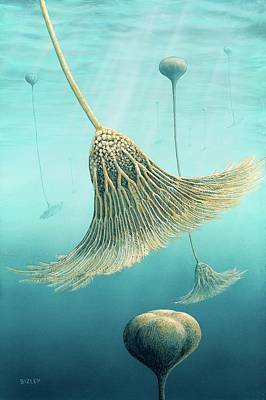 Fossil Photograph - Devonian Crinoid Illustration by Richard Bizley