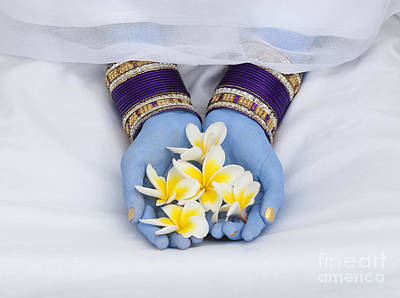 Frangipani Photograph - Devotional Offerings  by Tim Gainey