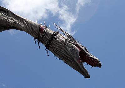 Photograph - Diagon Dragon by David Nicholls