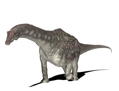 Paleozoology Photograph - Diamantinasaurus Dinosaur by Friedrich Saurer