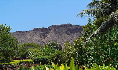 Photograph - Diamond Head From Honolulu Zoo by Michele Myers