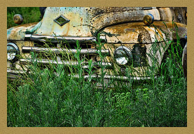 Photograph - Diamond In The Weeds by Ron Roberts