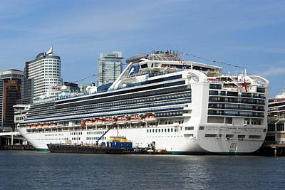 Photograph - Diamond Princess by Devinder Sangha
