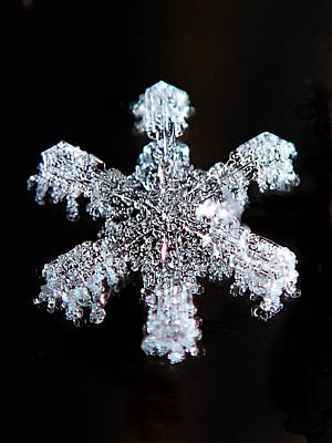 Photograph - Diamond Snowflake by Lorella  Schoales