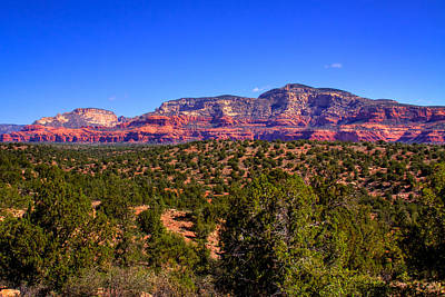 Photograph - Diamondback Gulch Near Sedona Arizona by David Patterson