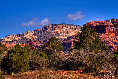 Photograph - Diamondback Gulch Near Sedona Arizona II by David Patterson