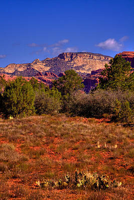 Photograph - Diamondback Gulch Near Sedona Arizona IIi by David Patterson