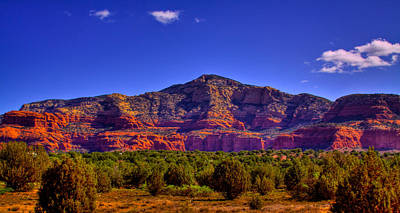 Diamondback Gulch Near Sedona Arizona Iv Art Print by David Patterson