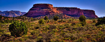 Photograph - Diamondback Gulch Near Sedona Arizona V by David Patterson