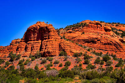 Photograph - Diamondback Gulch Near Sedona Arizona Vi by David Patterson