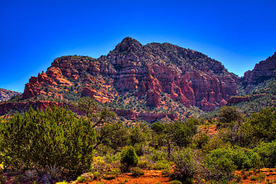 Photograph - Diamondback Gulch Near Sedona Arizona Viii by David Patterson