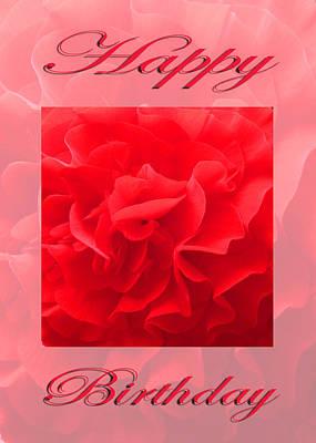 Martinspixs Photograph - Dianthus Red Flower Happy Birthday  by Martin Matthews