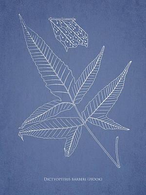 Dictyopteris Barberi Art Print