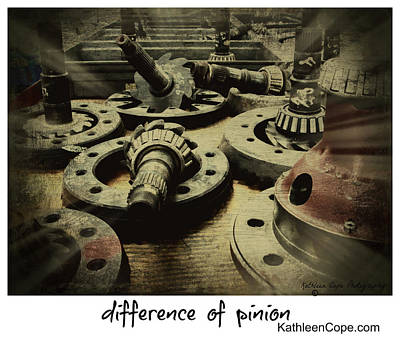Pinion Photograph - Difference Of Pinion by Kathleen Cope