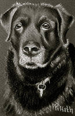 Digby Art Print