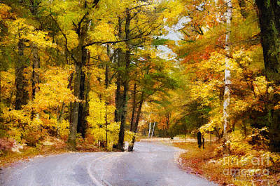 Photograph - Fall Colors by David Perry Lawrence