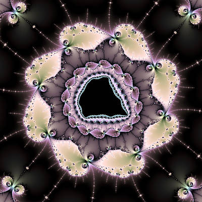 Digital Art - Digital Fractal Art - Purple Gray Brown Black by Matthias Hauser
