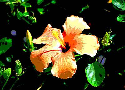 Photograph - Digital Orange Blossom Special by Linda Cox